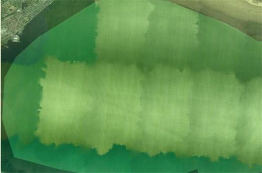 Vertes contrées