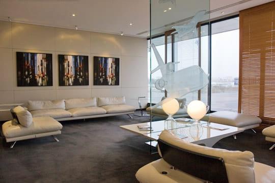 Dassault Falcon Service : salon VIP