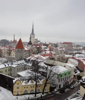 selon un rapport de l'ocde, l'estonie est le pays européen où le taux de