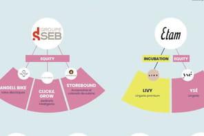 Infographie: comment les grands groupes s'immiscent chez les DNVB