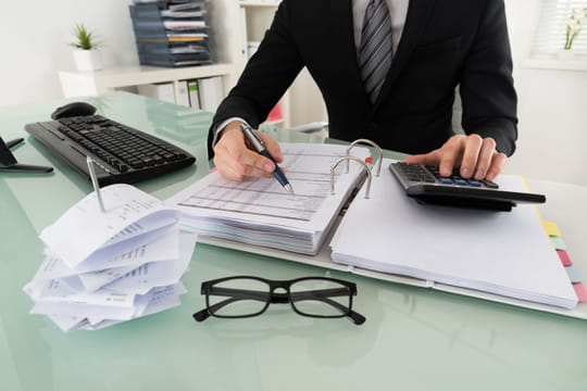 Expert-comptable: définition, études, en anglais...