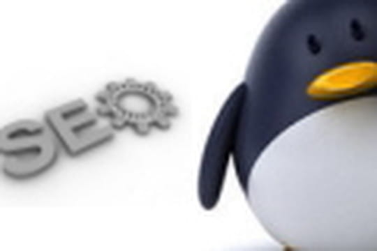 Penguin Update et pénalité Google