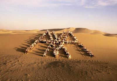 a plusieurs reprises, claude bébéar a emmené ses cadres dans le désert.