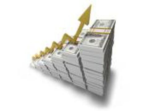 Les ventes en ligne des TPE en hausse de 69% en 2010