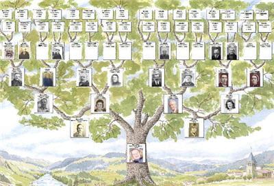 les modèles d'arbres sont nombreux