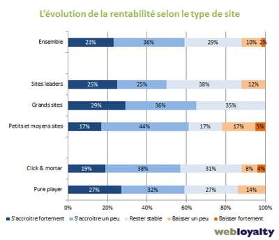 evolution de la rentabilité selon le type de site marchand