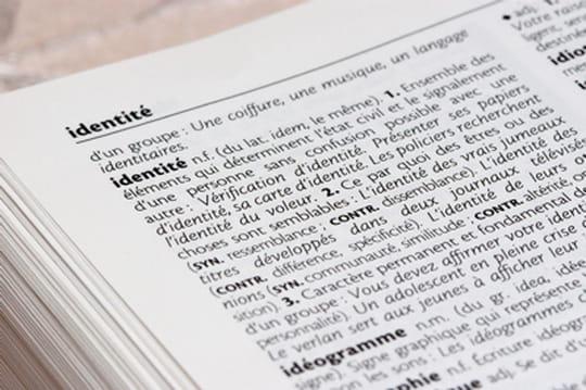 Petit dictionnaire de langue debois économique