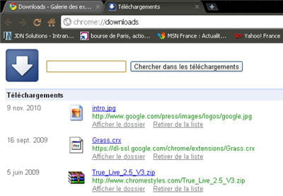 copie d'écran de l'extension downloads de google chrome