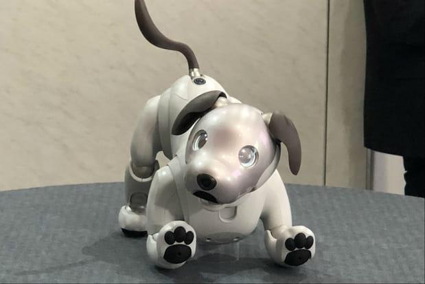 Aibo: le chien de Sony