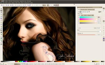 copie d'écran du logiciel disponible sur le site officiel.