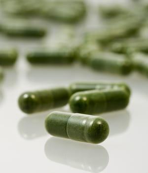 les micro-algues sont une excellente source d'omega-3 pour l'industrie