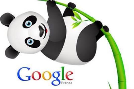 Google Panda 3.8 déployé