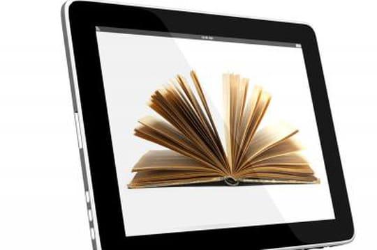 Les ebooks pèsent 20% de l'industrie américaine du livre
