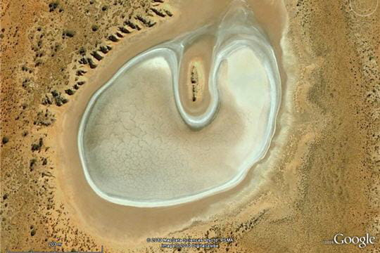 Un embryon au beau milieu du désert