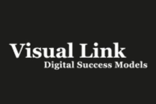 Visual Link se lance dans la délégation e-commerce en Suisse