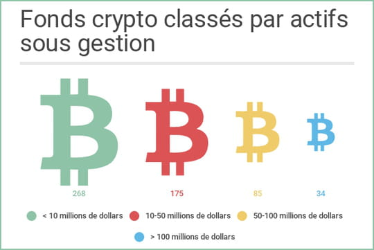 Le cabinet américain Crypto Fund Research recense 563fonds qui misent sur les crypto-monnaies. Le portrait-robot type? Un hedge fund US avec moins de 10millions de dollars sous gestion.