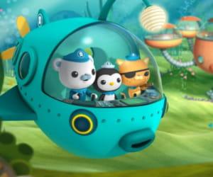 capitaine ours barnacles, lieutenant chaton kwazii et docteur pingouin peso dans
