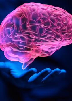 enregistrer sa vie psychique sur un ordinateur, la quête de l'esprit éternel.