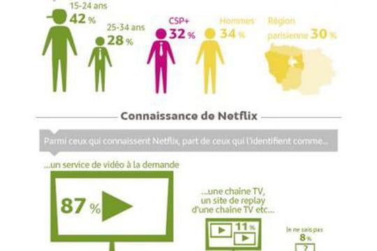 Infographie : 24% des Français ont déjà entendu parler de Netflix