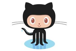Plongeon au cœur de GitHub: le Facebook des développeurs