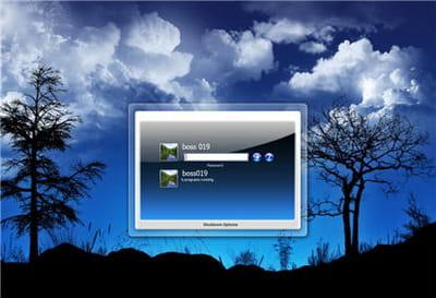 un exemple d'écran de demarrage personnalisé.