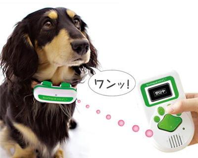 une traduction en direct sur écran des aboiements du chien
