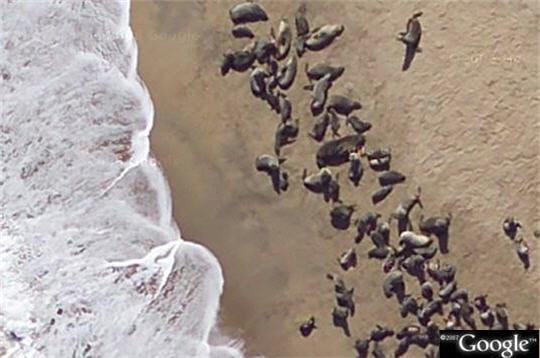 Banquise de sable