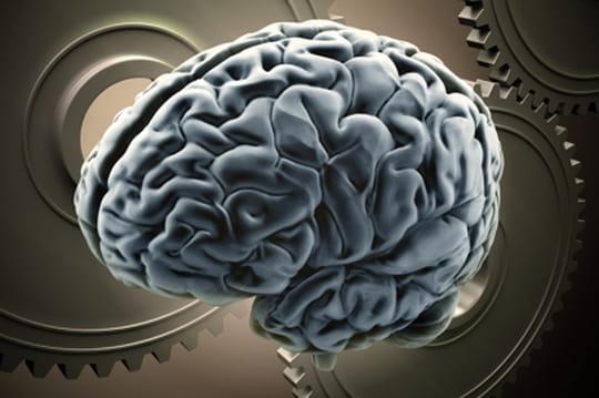 Les technos cognitives vont envahir les logiciels d'entreprise en 2016