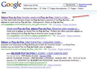 sur l'expression 'sejour puy du fou', le site ressort premier sur google.