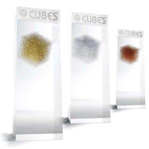 les cubes d'or 2009