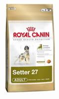 royal canin axe sa stratégie sur la taille, l'âge et la race des chiens.