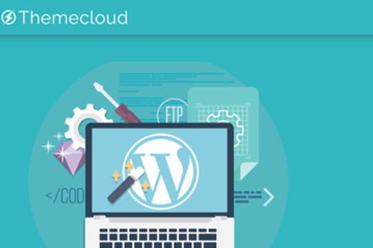 Themecloud : ce Français qui marie WordPress à Docker