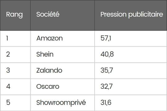 Publicité: les e-commerçants qui ont le plus investi en France en 2016