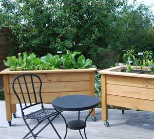 personnes âgées et citadins peuvent jardiner sans se casser le dos.