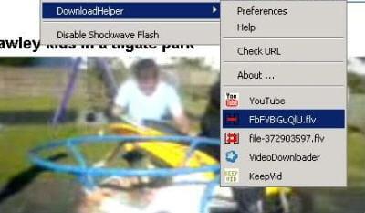 copie d'écran de l'extension downloadhelper pour firefox.