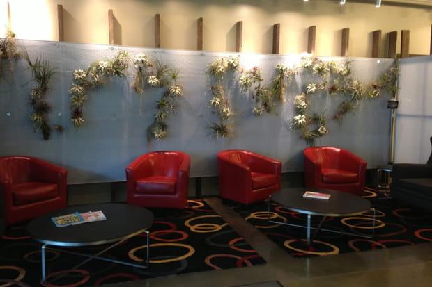 Décorations florales