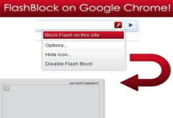 flashblock permet de voir une page sans son contenu flash.