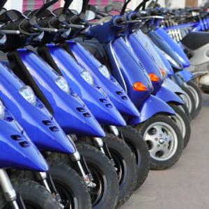 la croissance du marché du cycle ne permet pas de compenser la baisse d'activité