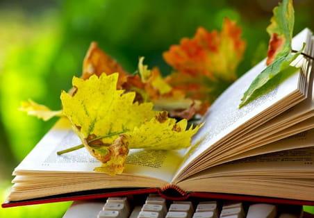 Les livres de management à ne pas manquer cet automne