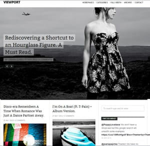viewport permet de mettre en valeur du contenu visuel ou multimédia.