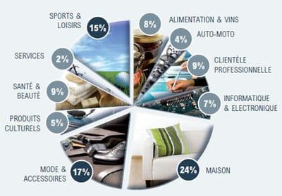 répartition des e-commerçants par secteurs d'activité en 2009
