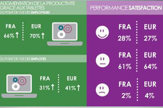 Infographie : les usages professionnels de la tablette en France et en Europe