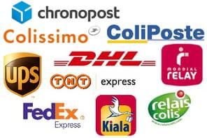 Top 5 des services de livraison les plus proposés par les e-marchands français