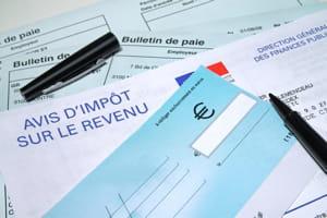 la cour consacre une large part de son rapport aux dépenses fiscales.