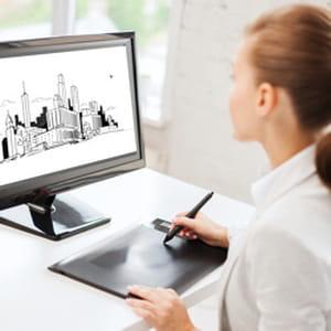 l'inspection générale des finances attribue aux architectes un revenu mensuel