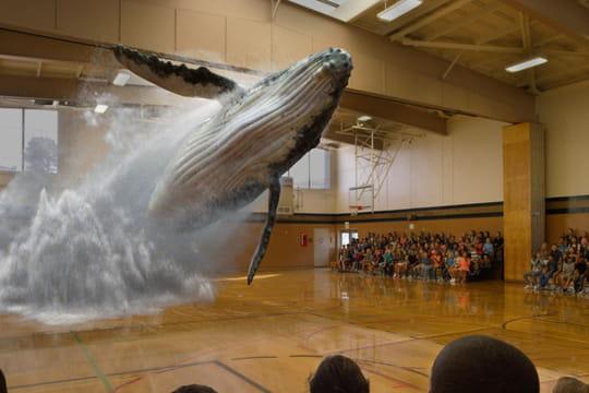 Magic Leap lève 827 millions de dollars pour sa techno bluffante de réalité augmentée