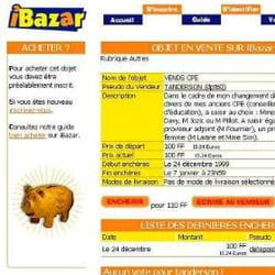ibazar est l'ancêtre français d'ebay