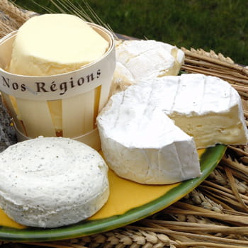 les besnier sont numéro 1 mondial du fromage.