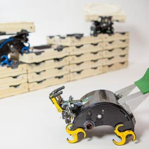 les robots termites assemblent une structure de manière autonome.