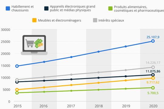 Quelle croissance pour l'e-commerce français d'ici 2020 ?